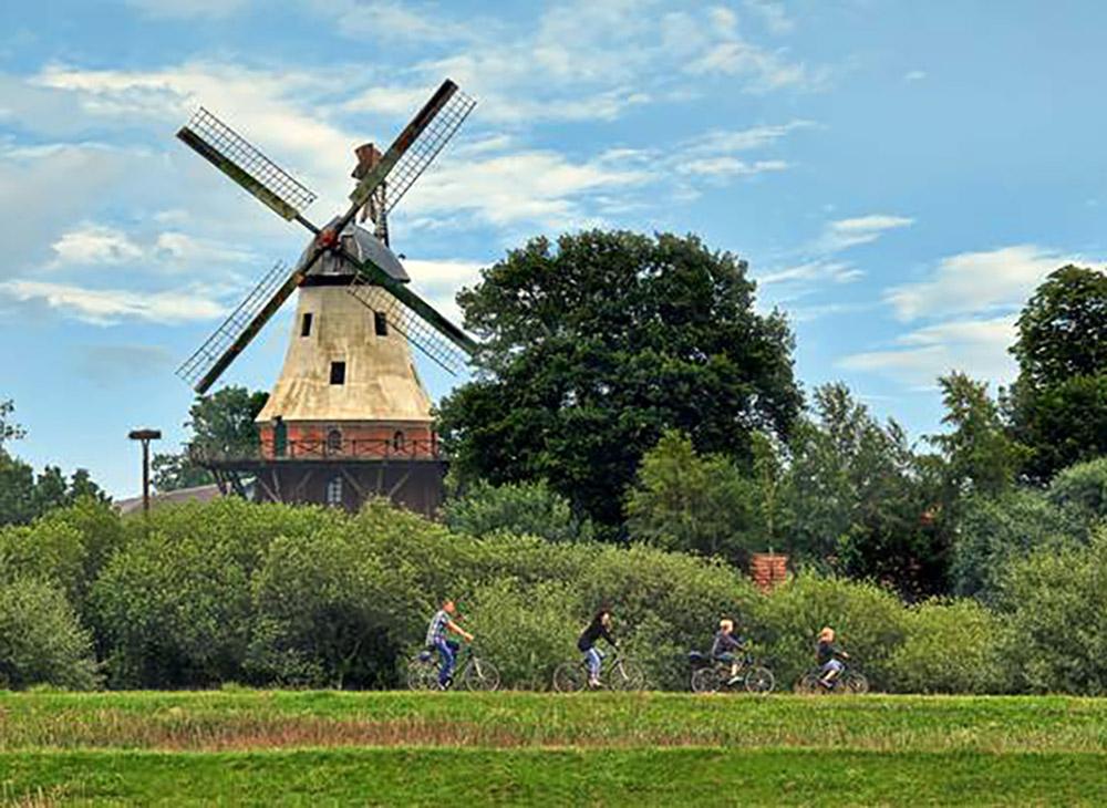 Eine Familien-Fahrradtour am Deich. Im Hintergrund ist die Mühle zu sehen.